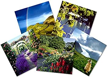 National trust greeting cards 5 card pack includes 5 tea for two national trust greeting cards 5 card pack includes 5 tea for two vouchers m4hsunfo
