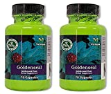 Daily Manufacturing Goldenseal Root Herbal Supplement 75 Capsules, 2 Pack