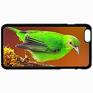 Fashion Unique Design Protective Cellphone Back Cover Case For iPhone 6 Case Bird Bright Color Branch Sit Black