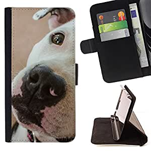 KingStore / Leather Etui en cuir / Apple Iphone 5C / Pitbull blanco Hocico Cerrar los ojos lindo