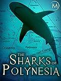 The Sharks of Polynesia