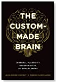 The Custom-Made Brain: Cerebral Plasticity, Regeneration, and Enhancement