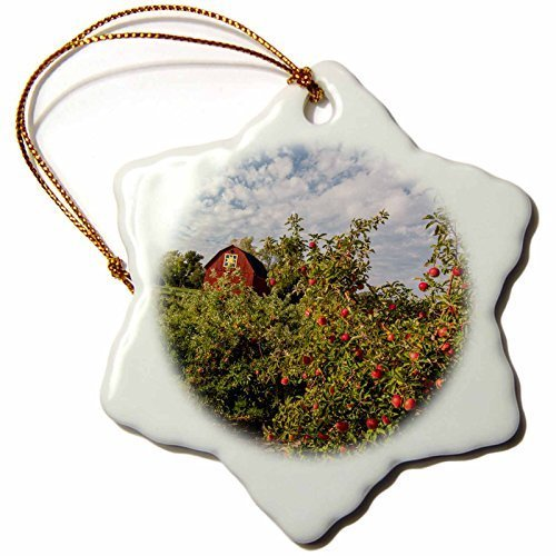 Funny Christmas Snowflake Ornaments Apples In Orchard With Quilt Barn Near Traverse City Michigan Usa Holiday Xmas Tree Hanging Ornaments Decoration Gifts