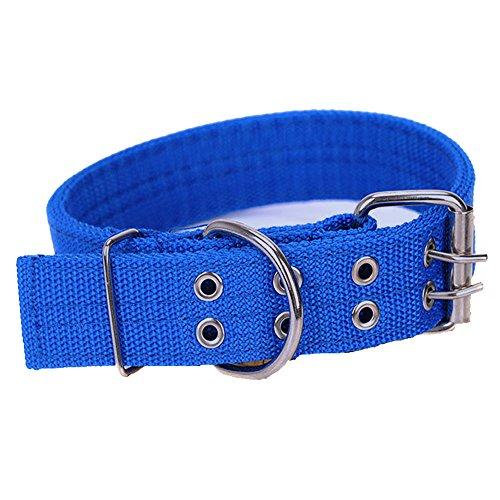 Pesp Pet Dog Metal Buckle 2-rows Army Green Nylon Fabric Belt Strap Adjustable Collar (XL, Blue)