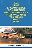 img - for The E-Commerce Consulting Small Business Book That Will Make You Money Right Now: A
