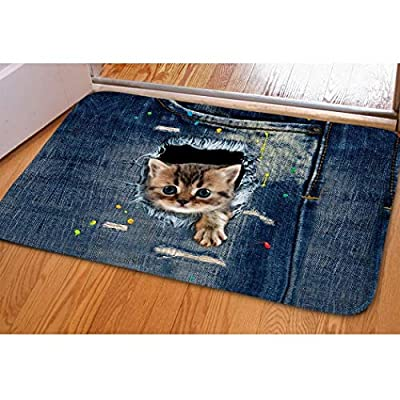 Pretty Kitty Welcome Mat For Indoor Bedroom Dorm Dollhouse Floral Funny Cat Door Mat Fast Dry Absorbent Hot Tub Bathroom Small Carpet Easy Clean Dirt Trapper Kitchen Hallway Floor Mat Entrance Doormat