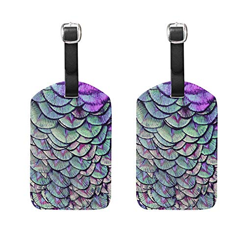 Set of 2 Luggage Tags Bird Peacock Feather Suitcase Labels T