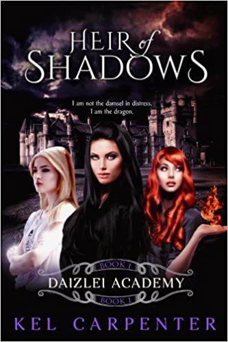 Book Heir of Shadows: A Daizlei Academy Novel: Volume 1