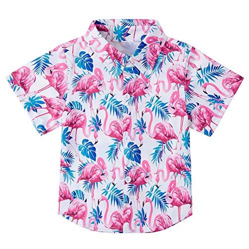 Cool Boys Dress (Big Boy's Button Down Flamingo Hawaiian Shirts Tops Size 8 Novelty Child's Short Sleeve Cool 3D Print Aloha Dress Tops T-Shirt)