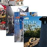 岩合光昭の世界ネコ歩き 第4弾 ブルーレイ 全4枚セット【NHKスクエア限定商品】