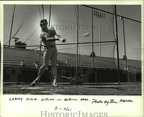Vintage Photos 1982 Press Photo Larry Hisle in Batting cage, Brewer Spring Training, Arizona