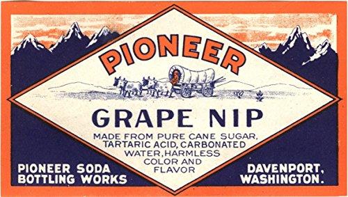 Pioneer Grape Nip Unused Original Vintage Bottle ()