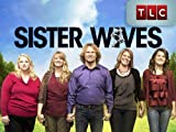 Sister Wives Season 1
