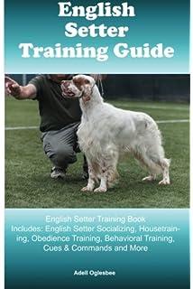 English Setter, English Setter Training AAA AKC   Think Like