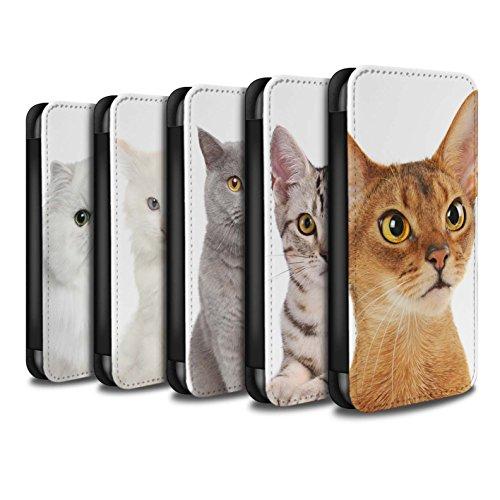 Stuff4 Coque/Etui/Housse Cuir PU Case/Cover pour Apple iPhone SE / Multipack Design / Espèces de chats Collection