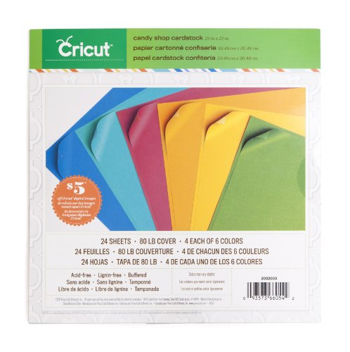 Cricut Textured Cardstock, 12-Inch by 12-Inch, Candy Shop (Cricut Craft Inks Provo)