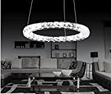 Dixun Contemporary Stainless Steel Led Crystal Chandeliers Ceiling Lights Fixtures Pendant Lighting Round 30cm (Warm)
