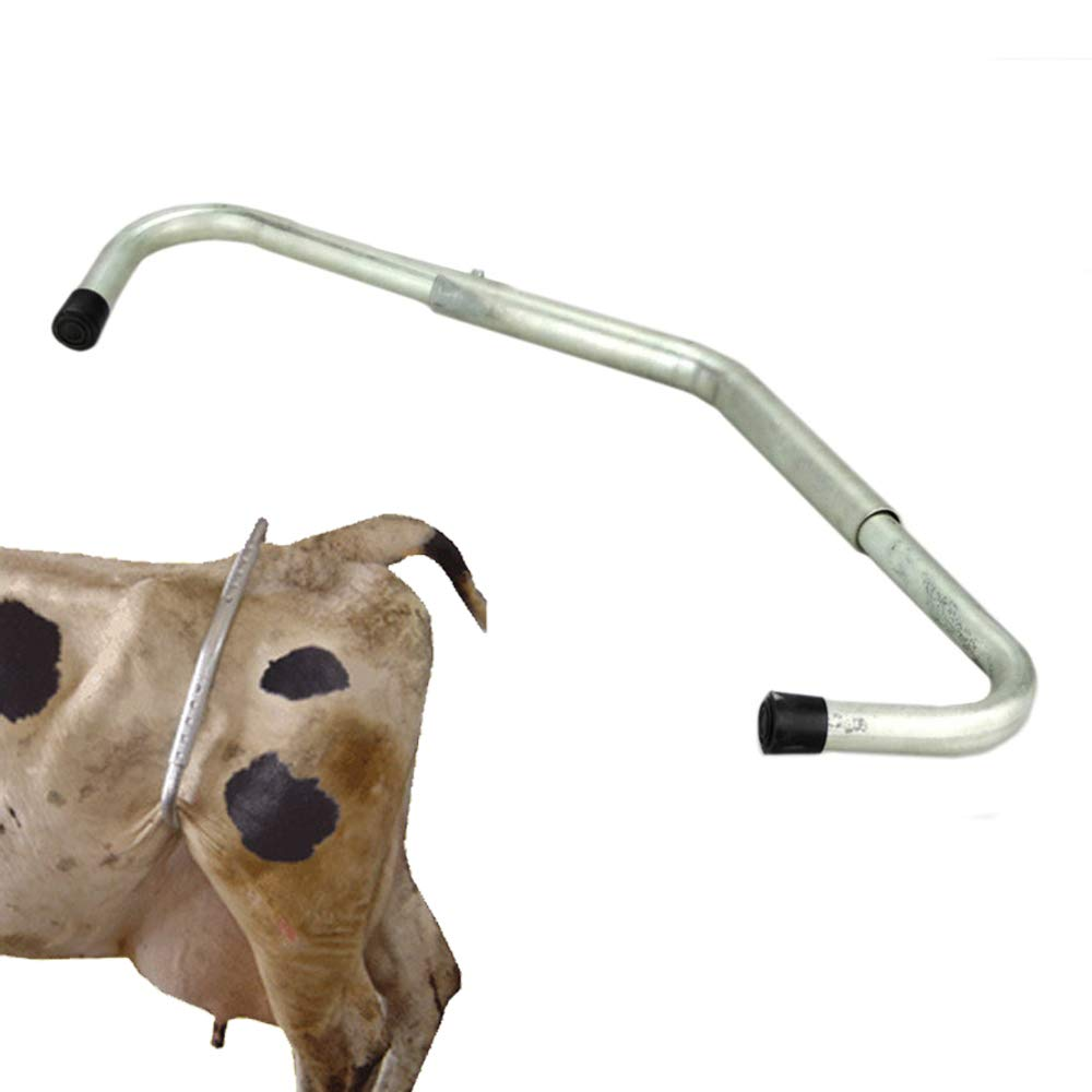 LYY The Cow Uses A Kick Stick The Cow Does Not Kick The Telescopic Adjustable Galvanized Tube And The Veterinary Equipment Cow Hoof Stick