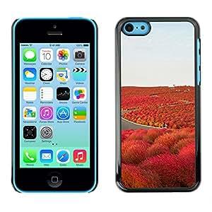 X-ray Impreso colorido protector duro espalda Funda piel de Shell para Apple iPhone 5C - Road Freedom Iceland Purple