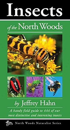 Insects of the North Woods (Naturalist Series) [Jeffrey Hahn] (Tapa Blanda)