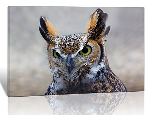 - Purple Verbena Art 1pc Owl Animal Picture Photo Prints on Canvas Walls Artwork, Modern Giclee Wall Artwork Painting for Room House Decor Decoration, Stretched and Framed, Ready to Hang 12x16 Inch