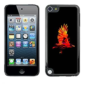 MOBMART Carcasa Funda Case Cover Armor Shell PARA Apple iPod Touch 5 - Colored Flying Eagle