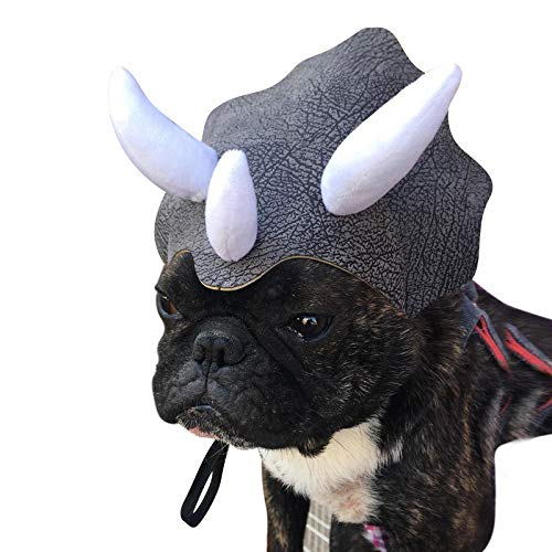 A dog wearing a dinosar hat