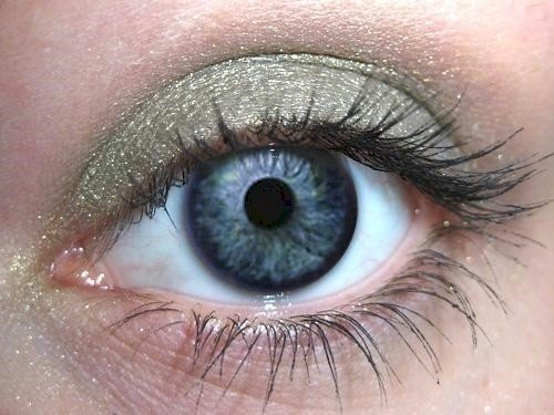 Sage Pure Mineral Eye Shadow - Orglamix - 100% Pure All Natural Mineral (Eye Shadow Sage)