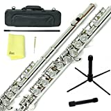 Sky C Flute with Lightweight Case, Cleaning Rod, Cloth, Joint Grease and Screw Driver -Nickel