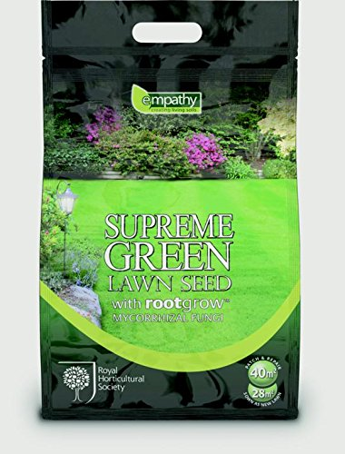 Empathy Supreme verde Lawnseed con Rootgrow 500 g