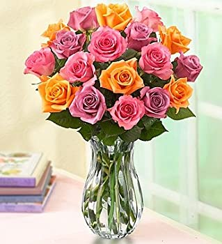 Sorbet 18-Rose Bouquet with Vase