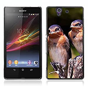Carcasa Funda Case //Swallow Bird V0000253// Sony Xperia Z L36H L36I