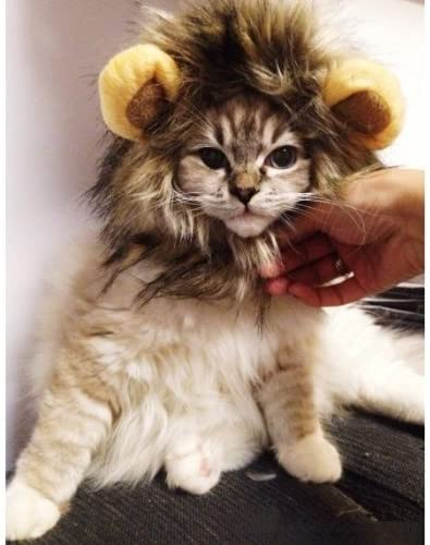 DOGLOVEIT Lion Mane for Cat Appreal, Pet Costume Lion Wig for Dog Cat Halloween Pet Dress up with Ears 13