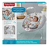 Fisher-Price Deluxe Bouncer: Sweet Dreams