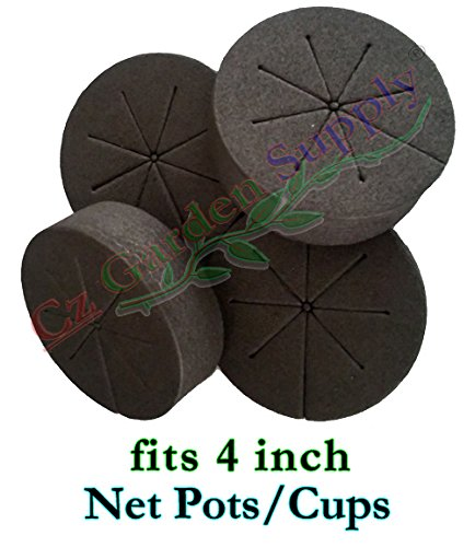 Cloning Collars Inserts Premium Grade Foam Better Than Neoprene. Fits 4 inch Net Cups/Pots for Hydroponics Plant Germination in DIY Cloners (fits 4 inch net pots/Cups, Black - 25 Pack) ()