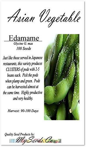 Edamame Beans - Sayamusume Bean - Territorial Seed