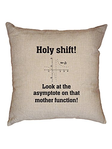 Holy Shit! Look At The Asymptote Mother Function! Decorative Linen Throw Cushion Pillow Case with Insert by Hollywood Thread