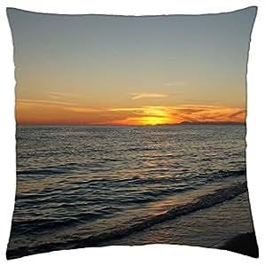 shorelines pedetentim - Throw Pillow Cover Case (18