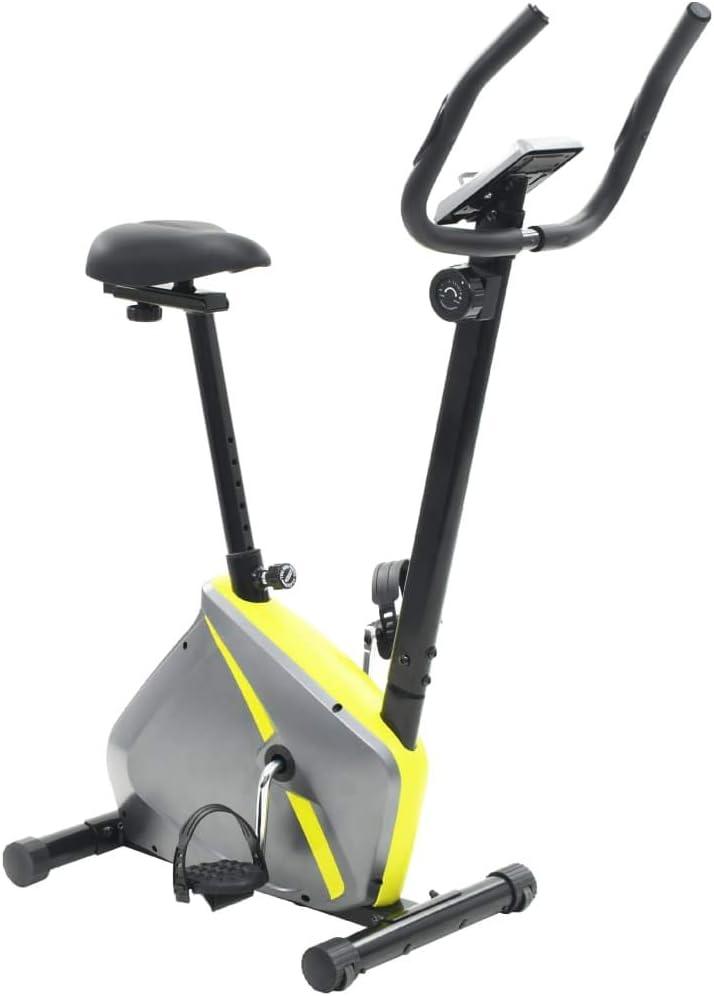 binzhoueushopping Bicicleta estática 5 kg con Movimiento de Masa ...