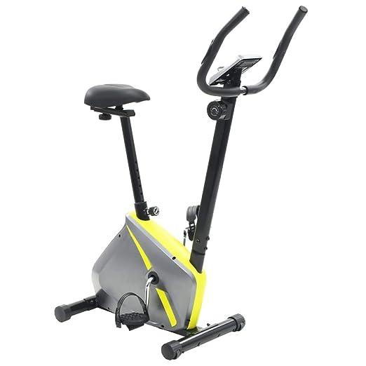 Festnight Bicicleta elíptica estática Masa 5 kg Gris y Amarillo 91 ...
