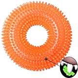 VEBE Dog Chew Toys Indestructible for Aggressive Chewers Large Breed Squeak Toys (Orange)
