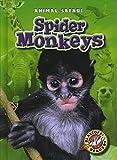 Spider Monkeys (Blastoff! Readers: Animal Safari) (Blastoff Readers. Level 1)