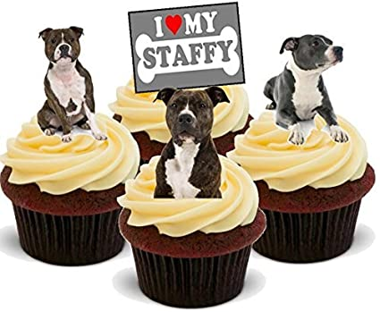 Brilliant Staffordshire Terrier Dog Mix Staffy Dogs Fun Novelty Birthday Personalised Birthday Cards Paralily Jamesorg
