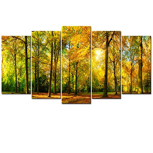 - Visual Art Decor 5 Pieces Large Canvas Prints Autumn Sunshine Forest Trees Painting Landscape Picture Wall Art Framed and Stretched Artwork for Home Living Room Guest Bedroom Decoration (01 Fall)