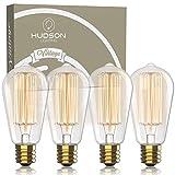 Vintage Incandescent Edison Light Bulbs: 60