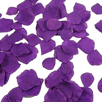 Amazon balsacircle 4000 silk rose artificial petals supplies pixnor 1000pcs silk rose petals decorations for wedding party purple mightylinksfo