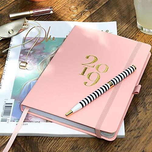 Busy B - Agenda planificador 2019 con bolsillos, pegatinas y ...