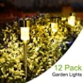 SUNNEST Solar Garden Lights, Pathway Lights