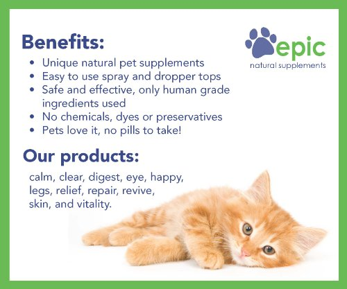 Epic Pet Health Calm - Natural Odorless Calming Sprays Made for Dogs and Cats That Promotes Calm and Relaxed Behavior. Made in USA (Dropper, 1 Ounce) by Epic Pet Health (Image #2)