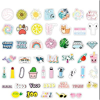 CheapPicks VSCO Girls Stickers 2020 Pack Cute,Waterproof,Aesthetic,Vinyl,Trendy Stickers for Teens,Girls,Kids - HydroFlasks, Laptop, Water Bottles, Car, Phone, Luggage, Skateboard, Hydro: Toys & Games